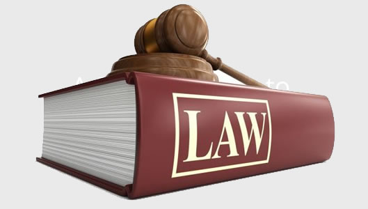 Bailiff Advice Legal Cases